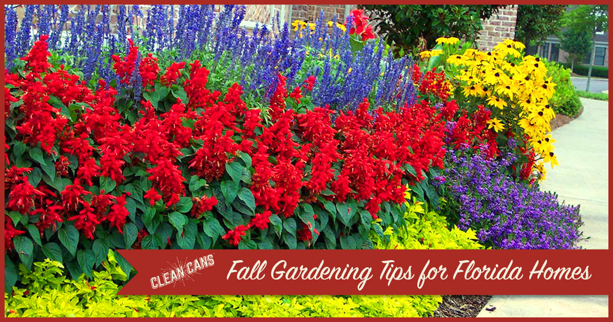 Fall Gardening Tips For Florida Homes Clean Cans